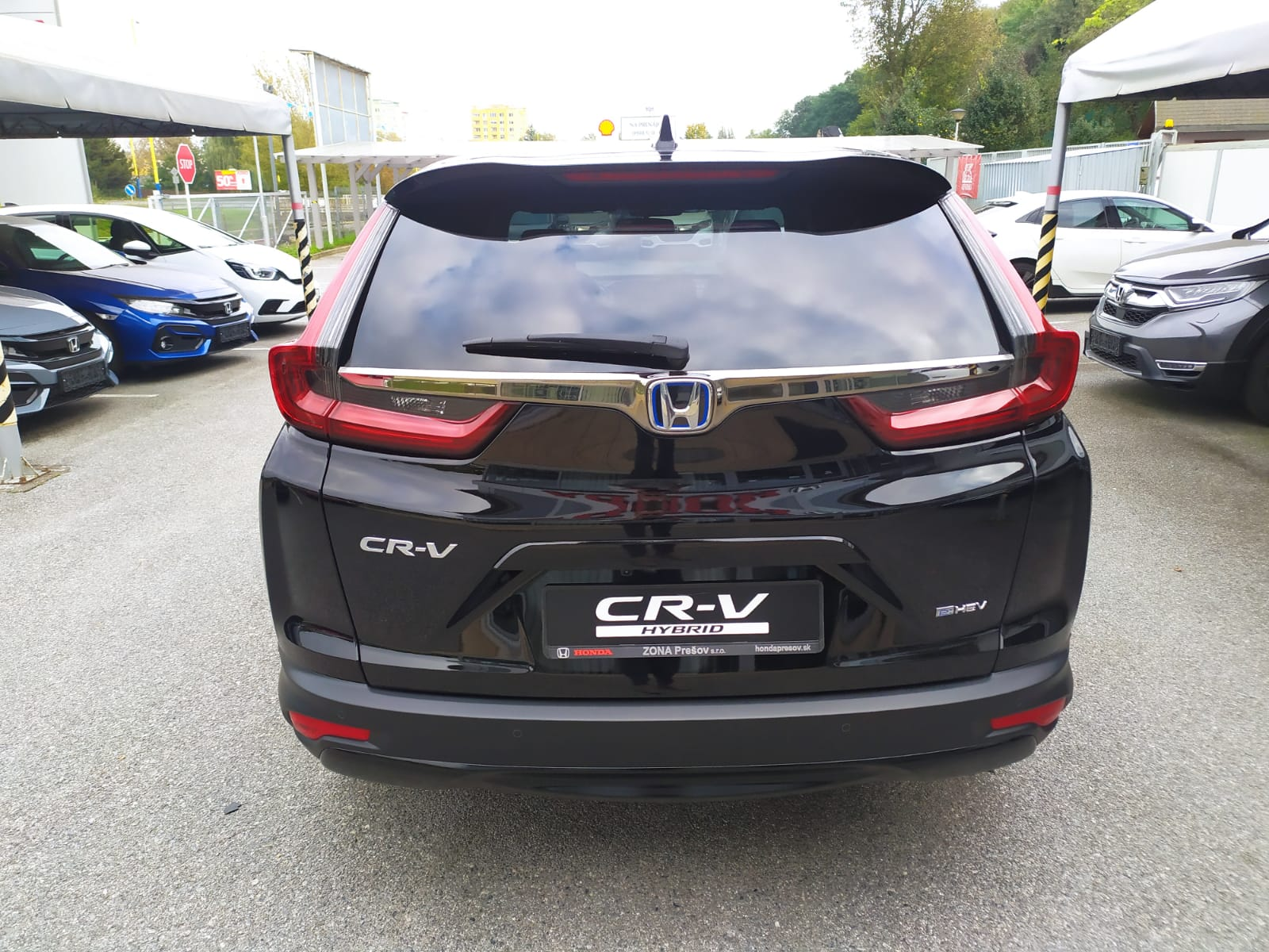 CR-V exterior, rear view, forest